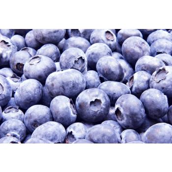 bilberry_1_1.jpg